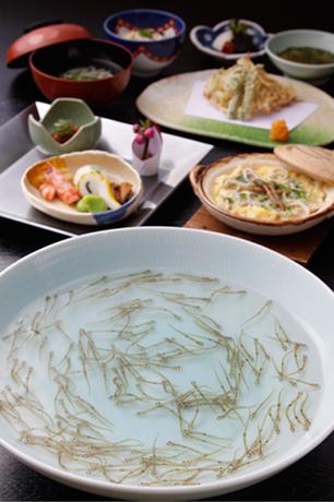 白魚料理2月下旬から4月中旬まで